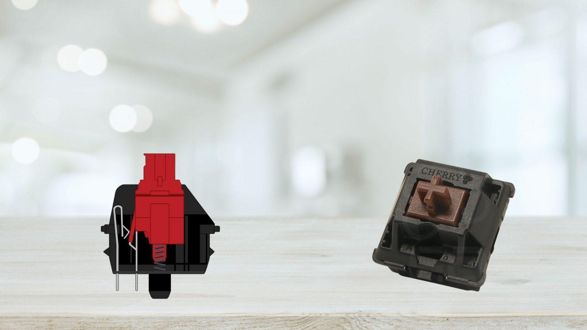 Cherry MX RED vs Brown